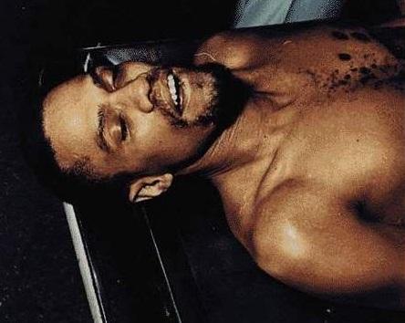 12 Species of Malice green autopsy photos